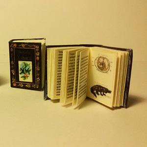 imatge de Micromundi > Enciclopedia de Història Natural