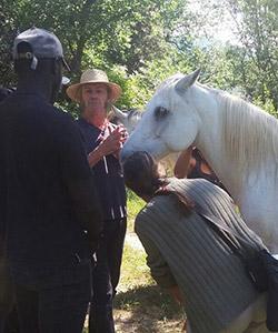 imatge de ¡Conoce los caballos en la Alta Garrotxa!