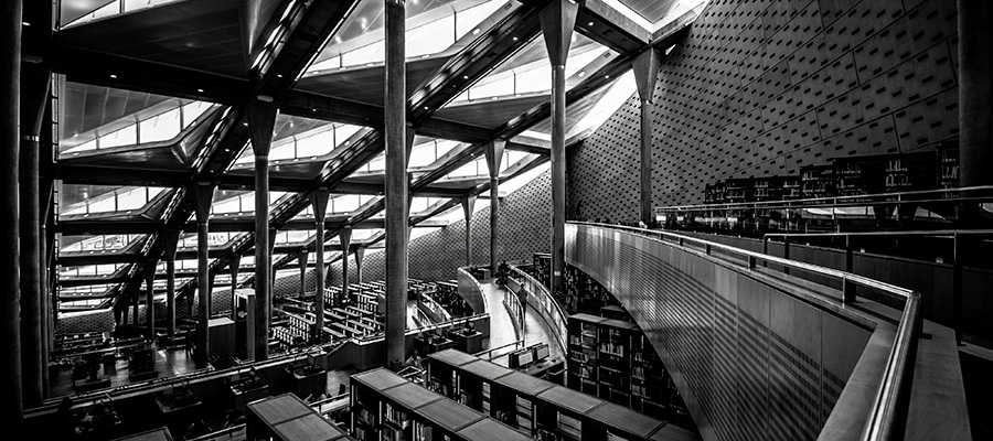 imatge de  Girona Libraries > Purchases 2020