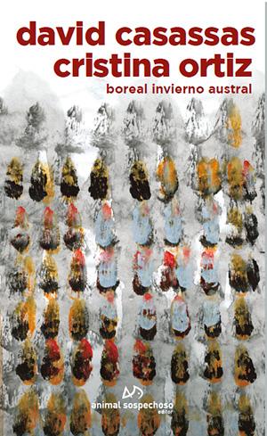 Boreal Invierno Austral