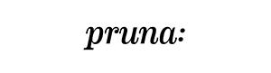 Logo de Pruna